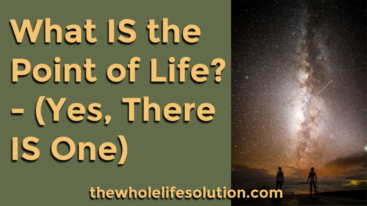 What is the Point of Life? – (Yes, There IS One)