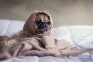 So You Had a Bad Day – 3 Tips on How to Handle It
