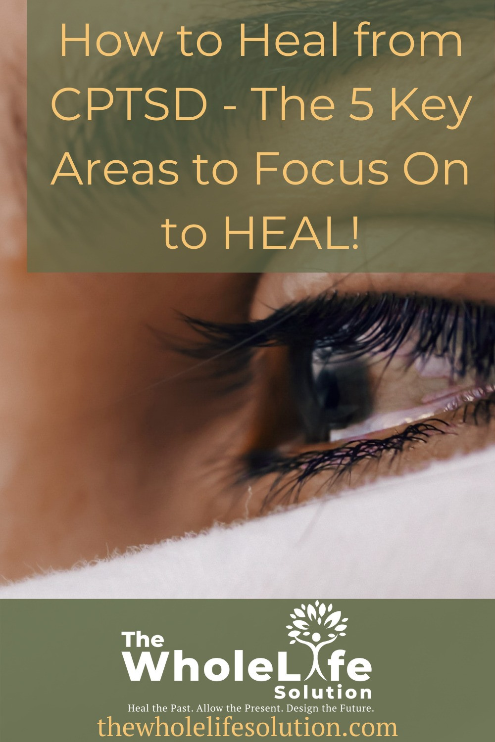How to Heal from CPTSD - The 5 Key Areas to Focus On to HEAL!
